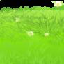 grass_7